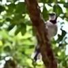 BirdsandDragons's avatar