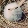 Birdskull31's avatar