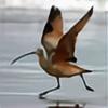 birdsofshore's avatar