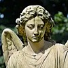 BitterMidnight's avatar