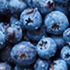 bIubberry's avatar