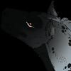 Bjorn-Free's avatar