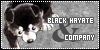 Black-Hayate-and-Co
