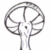 Black-Raccoon's avatar