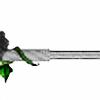 blackrose-3's avatar