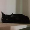 BleachPineapple's avatar