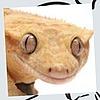 BlitZeeKay's avatar