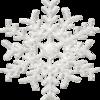 BlizzardBlitzer's avatar