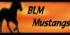 BLM-Mustangs
