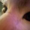 BlobDoodles's avatar