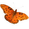 blossom2222's avatar