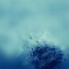 blottr's avatar