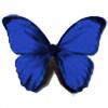 blubttrfl's avatar