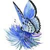 bluedreamsfairy's avatar