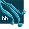bluehueart's avatar