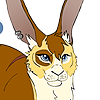 bluejaystarandspring's avatar
