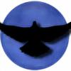 BlueMagnificent's avatar