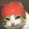 Bluemiilky's avatar