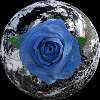 BlueRose-DC's avatar