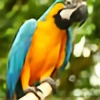 BlueYellowMacaw's avatar