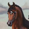 blxzella's avatar