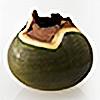 BNEP's avatar