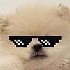 BOAT01's avatar
