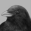 BobsicleG's avatar