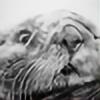 Bolbec's avatar