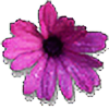 boltandmittens2's avatar