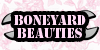 Boneyard-Beauties's avatar
