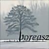 boreasz's avatar