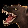 Borguare's avatar