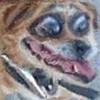 bornbyamistake's avatar