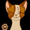 boxbae's avatar