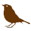 boywhodraws's avatar