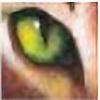 Bramblestar27's avatar