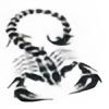 brandii007's avatar