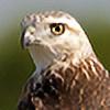 brentonbiggs's avatar