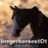 breyerhorses101's avatar