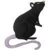 BrianAT16's avatar