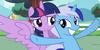 Bright-pony-star