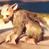 BrokenSongx's avatar