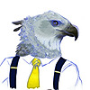 brosforever911's avatar