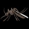 BruhFamA's avatar