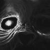 Bryanthealy's avatar