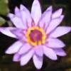 Buddhalassie's avatar