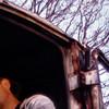 Bug-photography's avatar