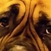 bull-mastiff's avatar