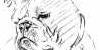 Bulldog-Breeds's avatar